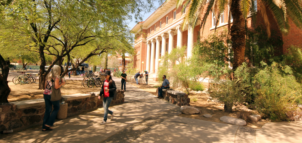 scenic landscape outside of Forbes Building, University of Arizona