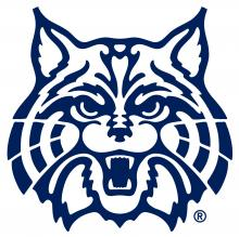 Wildcat face outline in blue color