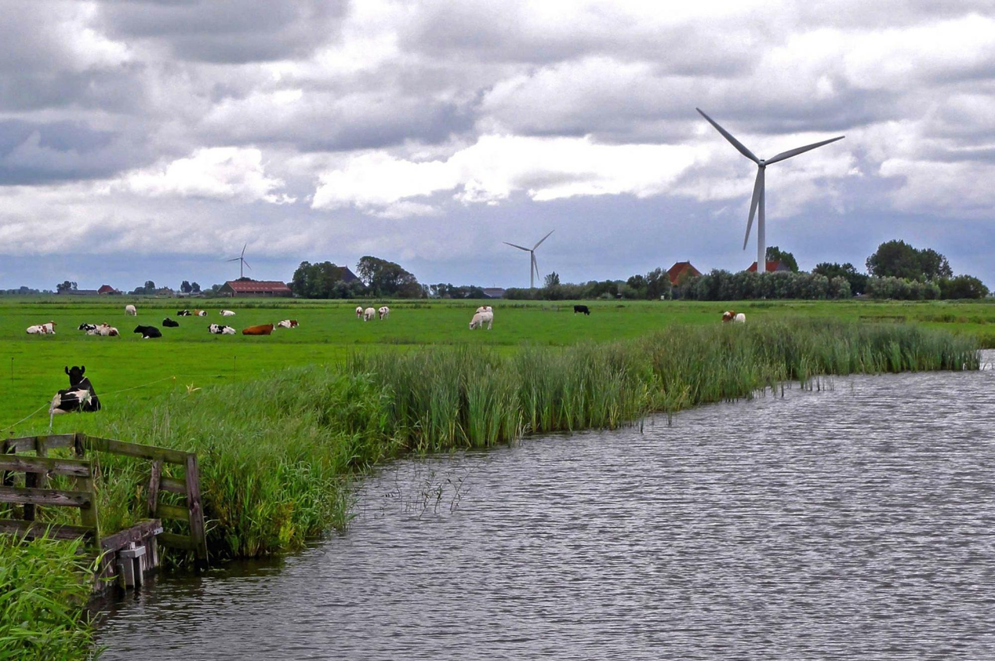 landscape photo of the Netherlands, Environmental and Water Resource Economics, University of Arizona